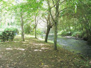 Le camping l'Agrion Bleu propose des emplacements au bord de la rivière du Bandiat
