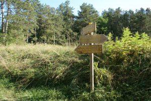 Depuis le camping vous accédez à de nombreux départs de randonnée
