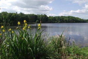 Circuit de l'étang de Saint-Estèphe